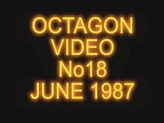 The OCTAGON 1987 Night Club Flashers