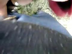 Bel video sul lago