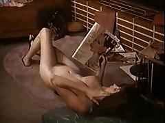 Lee Germaine Sunset vol 11-1