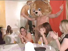 Cute bear party