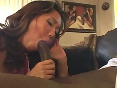 Asian Cunt Impaled By BBC