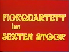 Love Video 13 - Fickquartett im Sexten Stock