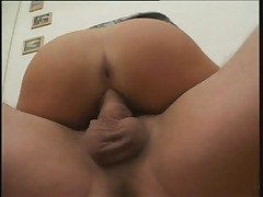 Young german with sweet tits fucks