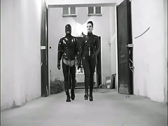 Latex domination