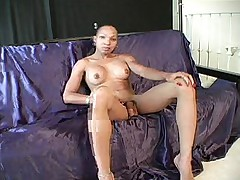 Shemale Strokes Her BBC