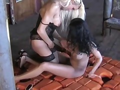 Shemale Akcja has Fun with a darkhaired Beauty