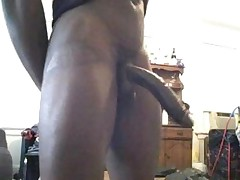 12 inch black cock