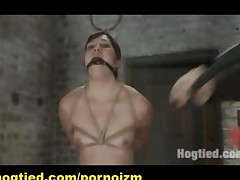 Bondage Punishments And Maledom Bdsm Training Of Slaves..