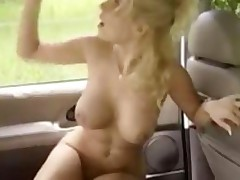 Blonde Chick Gets Fucked In The Car