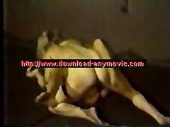 Catfight Nude