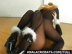 Pantyhosed Kitties Licking