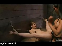 Bound Babe Strap On Dildo Fucked And Flogged