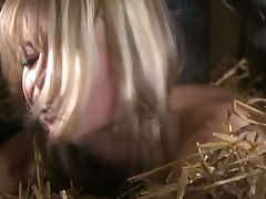 Beautiful teen blonde boned in a barn