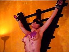 Hot bondage babe waxed for the fans