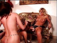 Three lesbians in hot dildoing action