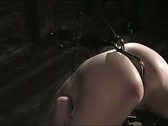 Sarah Jane Celyon - Device Bondage