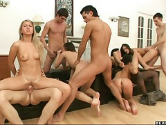 Stefania - Crazy Ass-fucking Orgy With Five Chicks