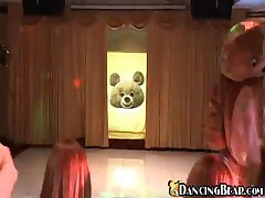 Dancing Bear - Who Does Not Like Bears?