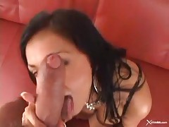 Luscious Chick Working On A Dick