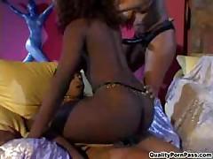 Yasmine And Carmen Vs Kitten - Foxy Black Butts