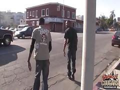 Cameron V - Blacks On Cougars
