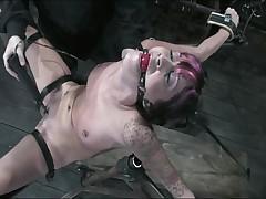 Kayden Faye - Device Bondage