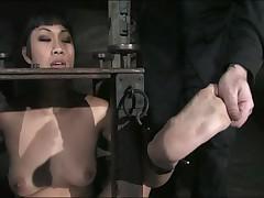 Dragonlily - Device Bondage