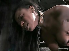 Hailey Young - Device Bondage