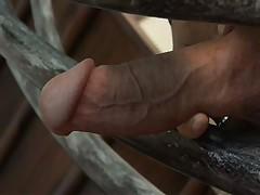 Aubrey Addams