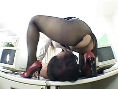 The hottest pantyhose worship scene EVER