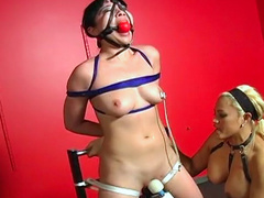 Perverted tied babe being humiliated