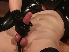 Mistresse Silvia trains villein to engulf ding-dong and eat cum