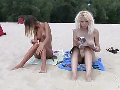 They love sunbathing exposed on the wild beach