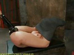 Hogtied Compilation