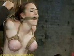 Four Girls are Bound and Fucked