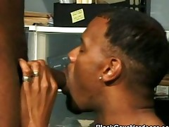 Black Meat Blowjob