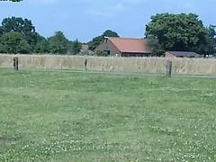 La ferme The farm by First75 Part 5