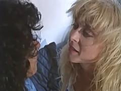 Suburbans Lesbian Instalment