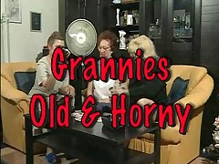 Granny Susanne and friends