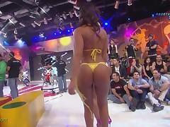 Brazilian Asses 1