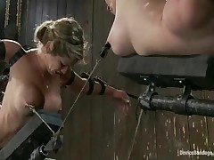 Darling And Felony And Isis Love - Device Bondage