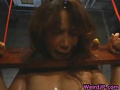 Asian Doll Is Held Like An Animal On A Farm 3 By WeirdJP