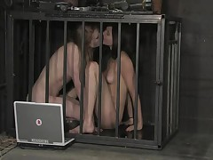 Sindee Jennings And Madison Young And Isis Love - Device Bondage