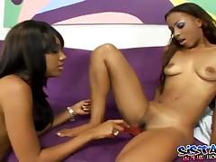 Tina And Kapri - Lesbian Chocolate Pussies