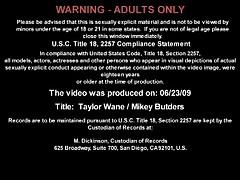 Taylor Wane - Slutty MILF Seduces A Younger Dude
