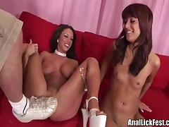 Audriana And Mya - Blowjob And Asslicking Combo