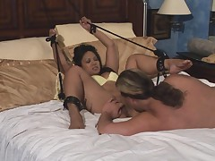 Tasha - Real Swingers Fantasies #5
