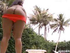 Pleasure And Roxi - Gargantuan Butts
