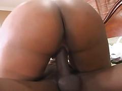 Apple Bottom Azz 3