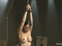 Device Bondage: Lactating Titties Of The Prancing Petite Tia